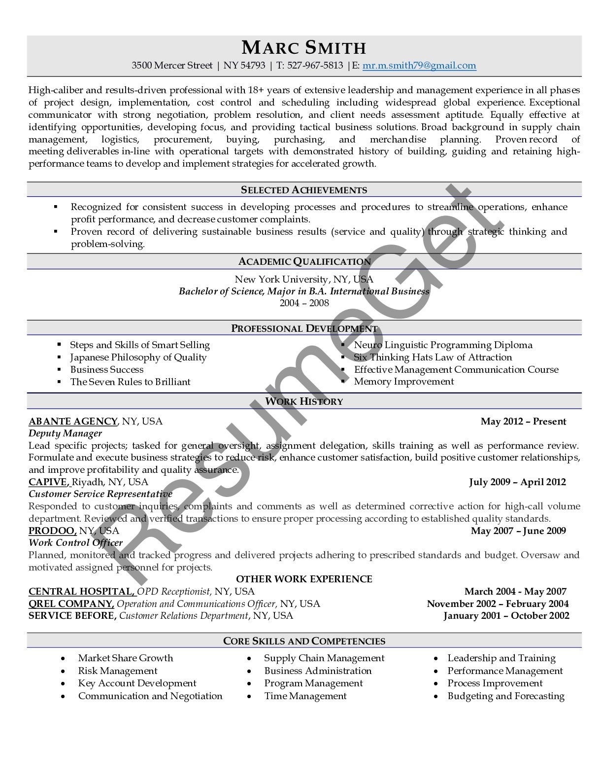 CV Example for Manager