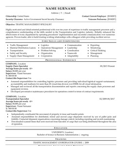 Resume Example for Government