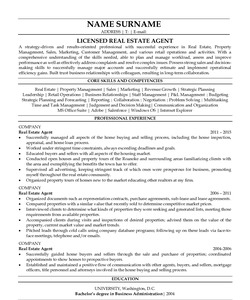 Resume for Real Estate Agent
