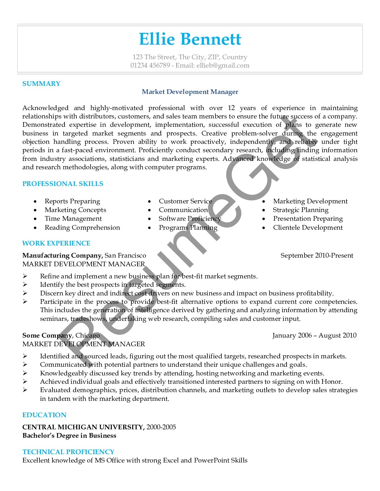 Resume Example for Marketing Professional