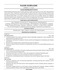 Resume Example for Sales Representative